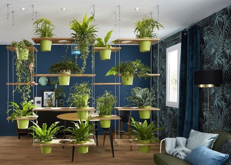 Wall Planters Small