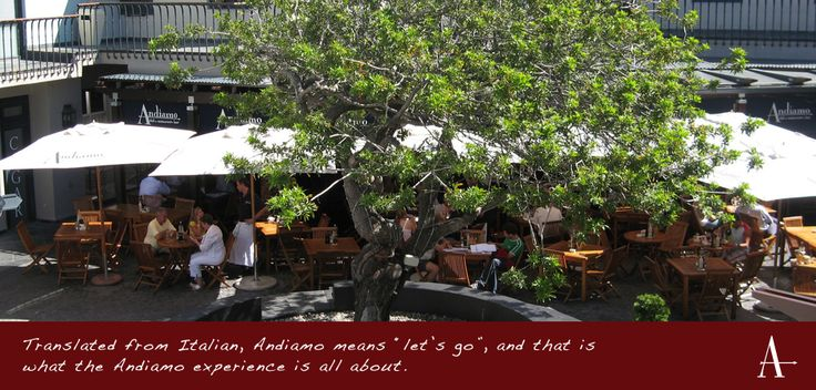 Andiamo - deli restaurant and bar. Go here to enjoy the finest italian food. Join the place during the power cuts because they've a generator! From Mondays till Thursdays you can tuck either 2 pastas/2 pizzas or 1 of each with a Carafe of Marlot or Suavignon blanc only for just R159,- Adres: 72 Waterkant Street, De Waterkant