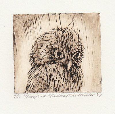 Morepork, print bamboo etching, 2009, Andrea Mae Miller exhibition kura art gallery new zealand