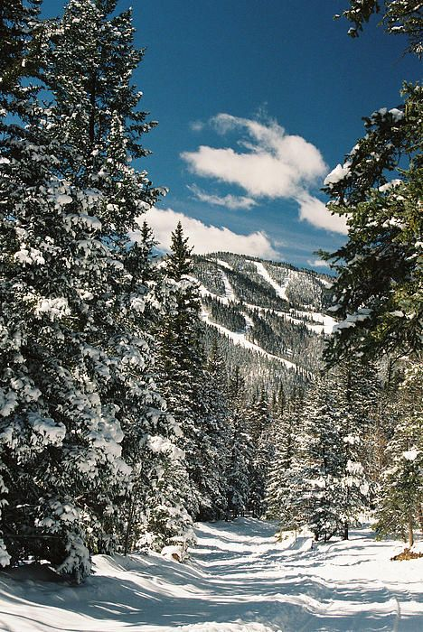 Red River Ski Area, New Mexico; photo by Ron Weathers
