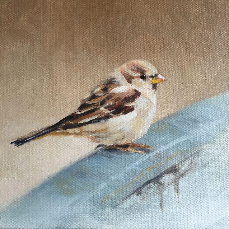 Sparrow in Paris, 24 x 24 cm, oil on canvas. By Patty van Loon