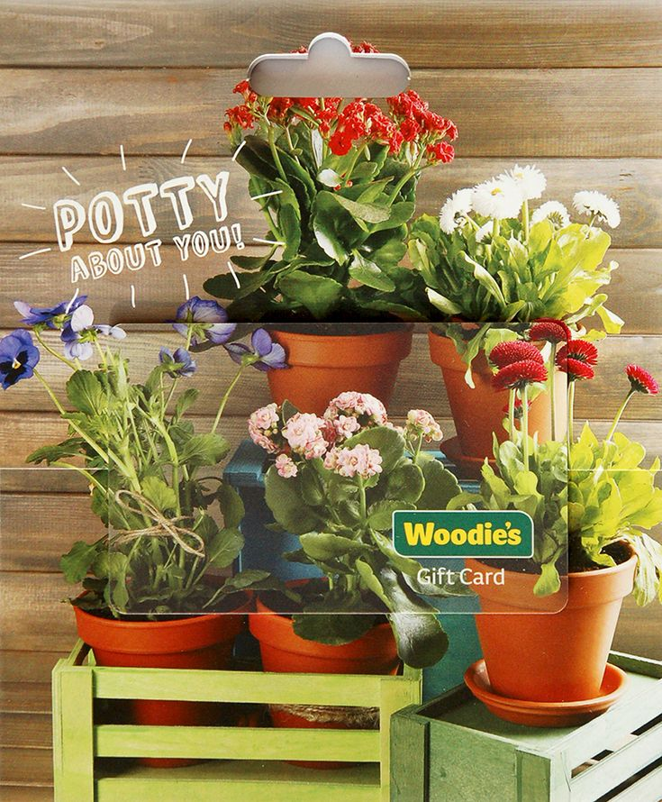 Potty about you!