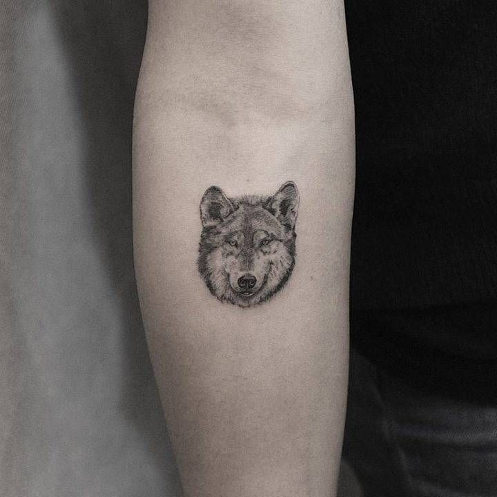 Single needle wolf head tattoo on the inner forearm. Tattoo Artist: Kane Navasard