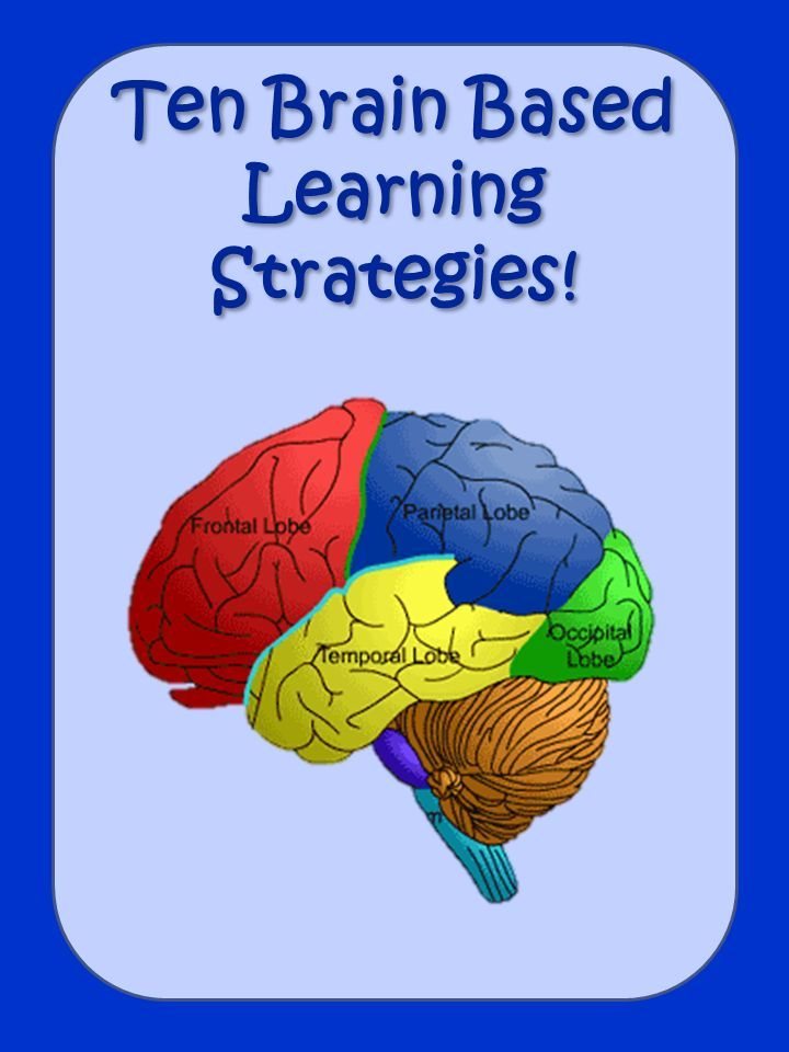 Ten Brain Based Learning Strategies | Pinterest ...