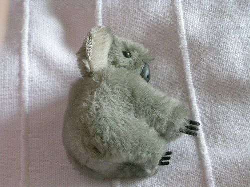 koala clip! 80s ;) totally had one of these lol.