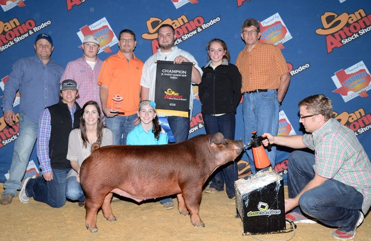 Congrats to Anzleigh Thomas and Family, winner of the Champion Duroc Barrow at the San Antonio Livestock Show! Not only was this barrow raised by one of our salesman, Brock Herren, but it was also using the entire line of Ralco Show products!!!