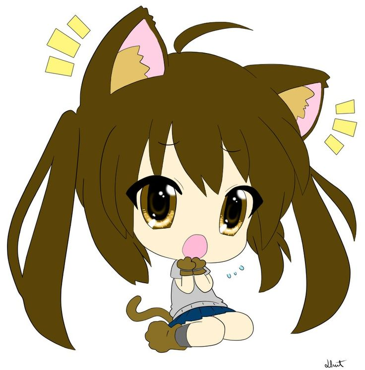 Pictures Of Kawaii Chan S Cute Cat Pet