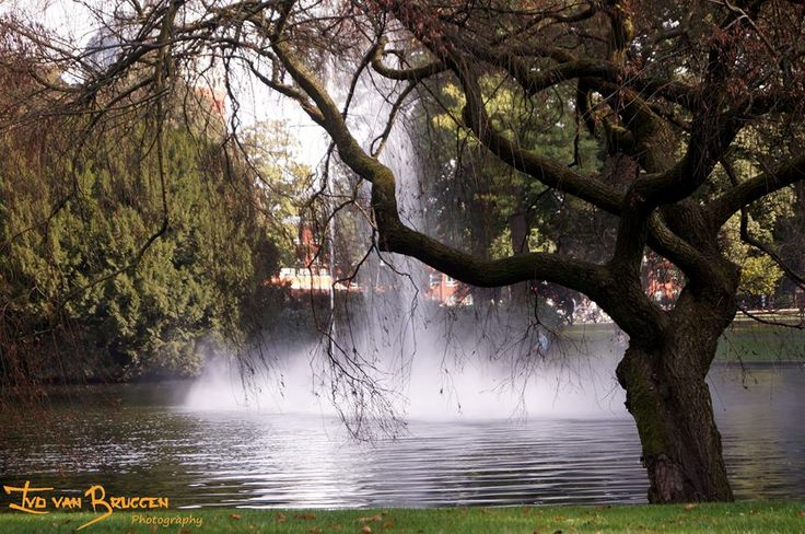 Park Valkenberg, Breda -The Netherlands