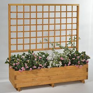 blumenkasten mit spalier rasenkanten mit rankgitter aus holz sichtschutz garten pinterest. Black Bedroom Furniture Sets. Home Design Ideas
