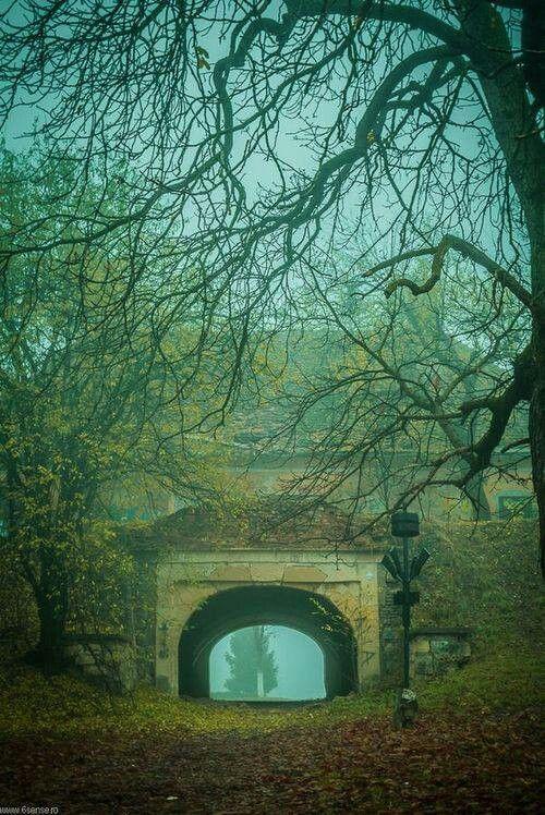 Ancient Portal. Cluj-Napoca, Romania.