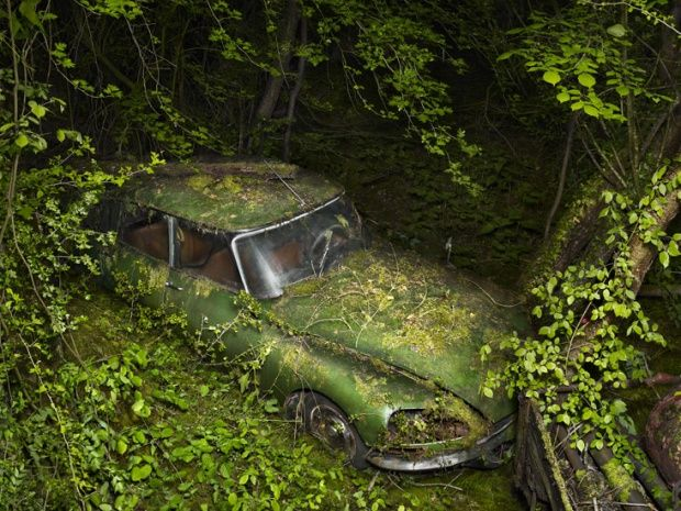 Abandoned car in nature by Peter Lippmann