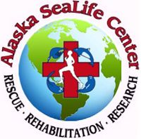 Alaska SeaLife Center Home Page.  MUST SEE center in Seward Alaska