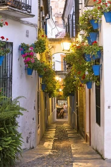 Spain, Andalusia, Cordoba. Calleja De Las Flores (Street of the Flowers) in the Old Town, at Dusk