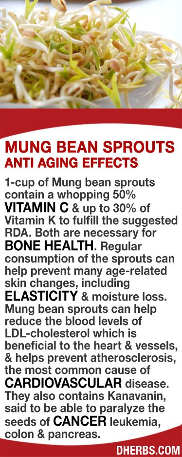 1-cup of Mung bean sprouts contain 50% Vitamin C & up to 30% of Vitamin K to ful…