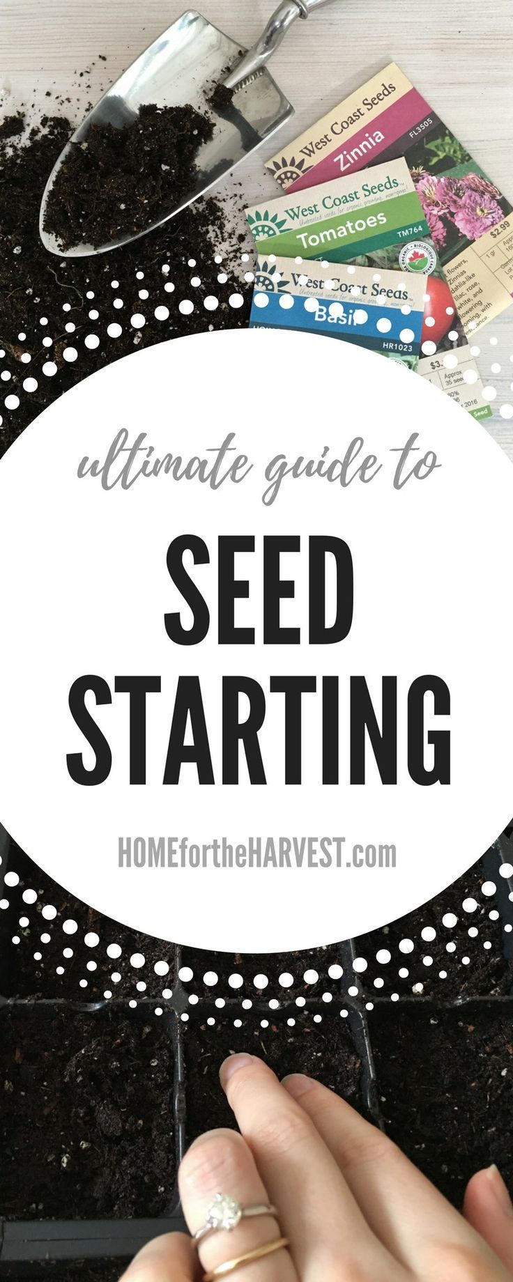 Seed Starting - The Ultimate Guide! Learn how to grow healthy plants from seeds with these simple, step-by-step instructions   Home for the Harvest #seedstarting #seed #seeds #heirloom #organicgardening #gardening #grownfromseed