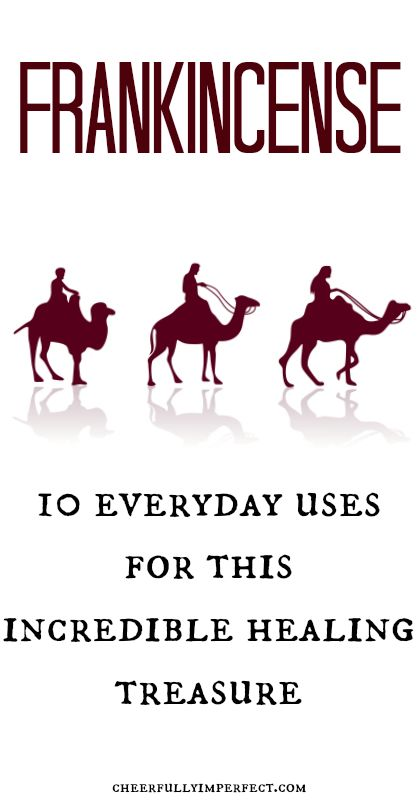 Young Living Essential Oils: Frankincense - 10 everyday uses for this incredible healing treasure. Throughout history people have valued Frankincense more highly than gold and for good reason. #frakincense