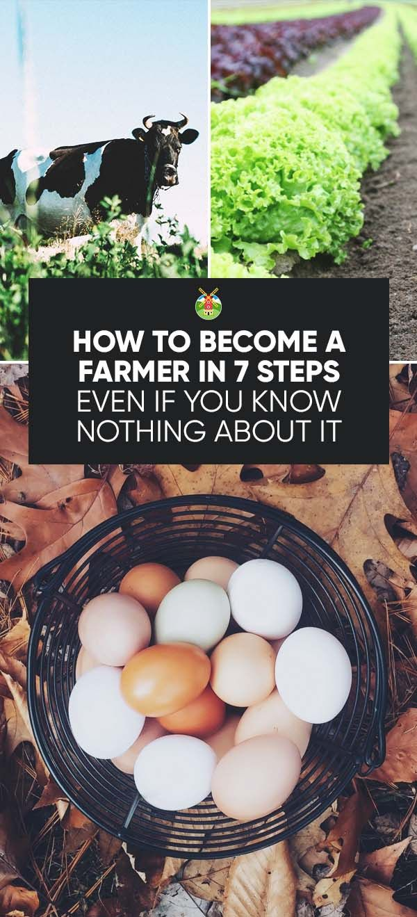 What makes a person a farmer? We share our view on how to become a farmer and what actually makes you a farmer in the first place.