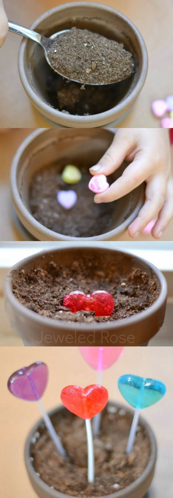Magically grow heart pops and WOW the kids - such a cute activity for Valentine's Day! @Kassaundra Hilton