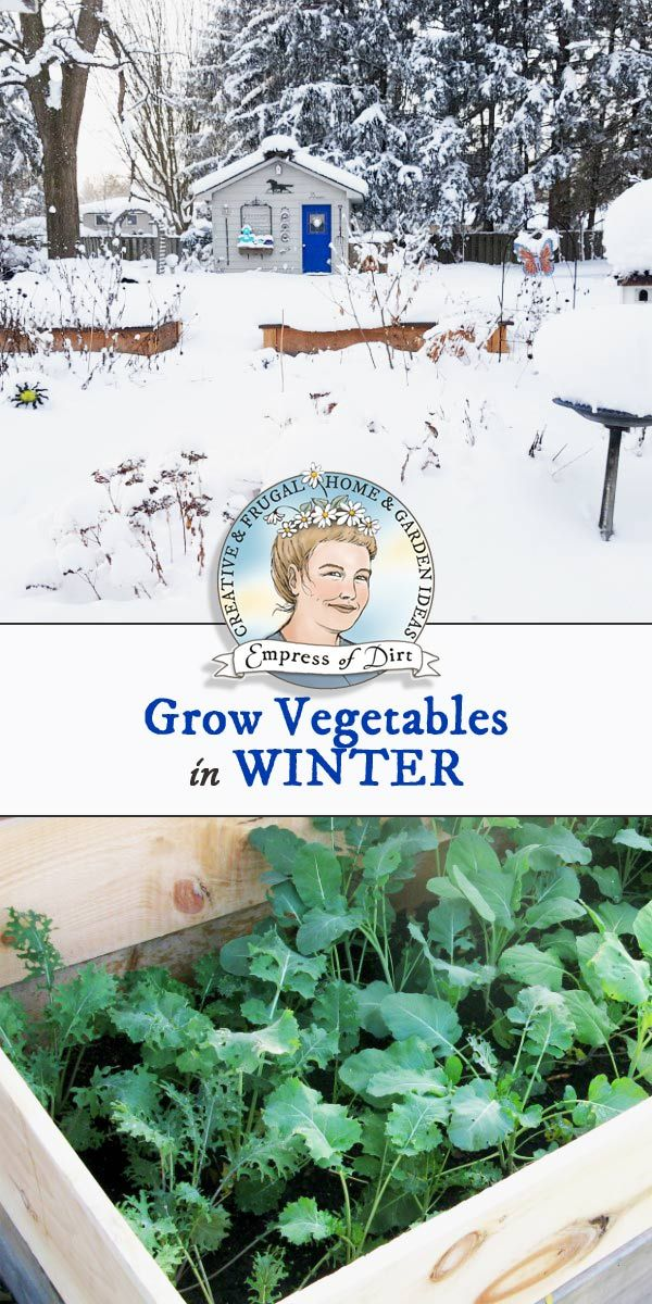 Tips for growing vegetables in the winter outdoors in a cold-climate garden.