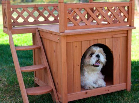 Coisas Variadas Para Pets: Casas Criativas para Cães