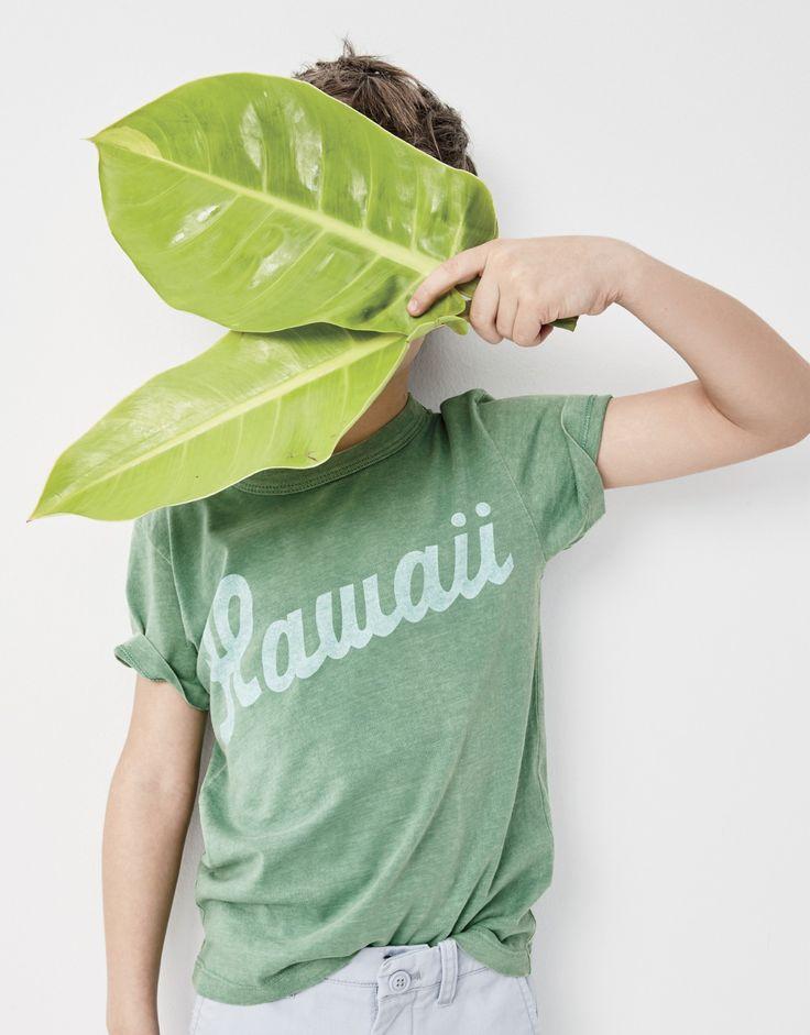 "Boy's Ebbets Field Flannels® for crewcuts ""Hawaii"" T-shirt."