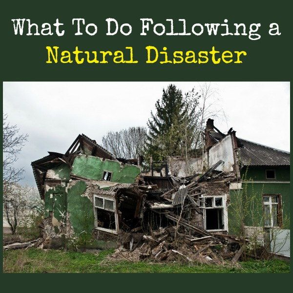 Following a natural disaster, there will likely be confusion and panic.  Think about creating a post-disaster checklist you can refer to without having to think about it.  Here is an example to get you started.    What To Do Following a Natural Disaster | Backdoor Survival