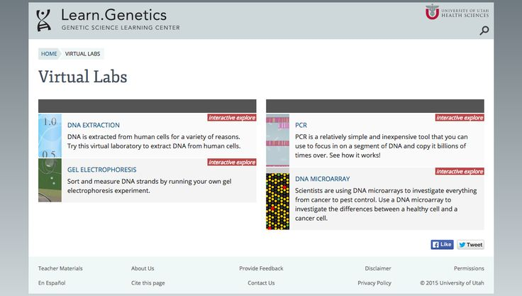 University of Utah has 4 great virtual labs, all about laboratory genetics: PCR, Gel electrophoresis, DNA microarray, DNA extraction