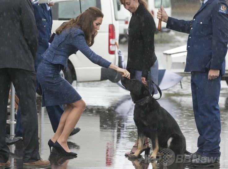 ウィリアム王子一家、NZから豪州入り 国際ニュース:AFPBB News   豪シドニー(Sydney)に向かう直前に訪問したニュージーランドの首都ウェリントン(Wellington)の警察学校で、警察犬のジャーマンシェパードの鼻をなでるキャサリン妃(Catherine, Duchess of Cambridge、2014年4月16日撮影)。(c)AFP/POOL/MARK MITCHELL
