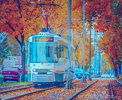 Beautiful seasonal october image from romania with vibrant fall in Bucharest on tram line 1