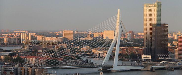 Spacer po moście Erasmusbrug i po nabrzeżu