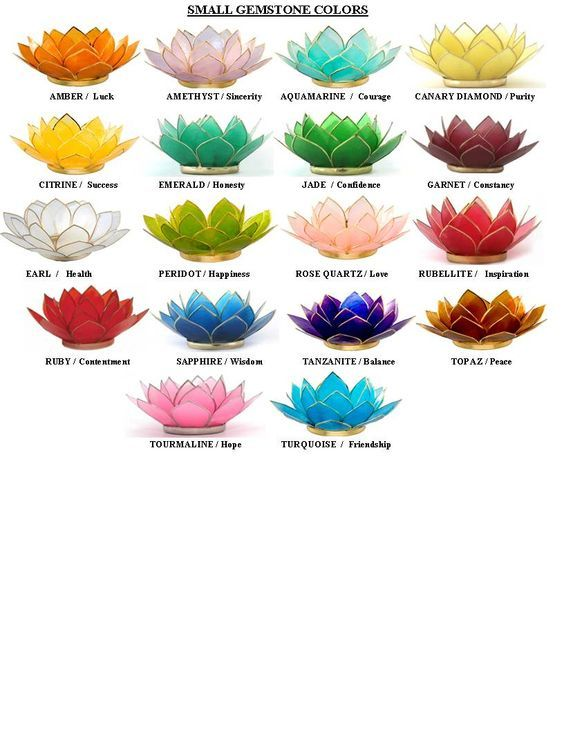 lotus flower color meanings | Lotus Capiz Shell Candle Holders Create an Alluring Atmosphere:
