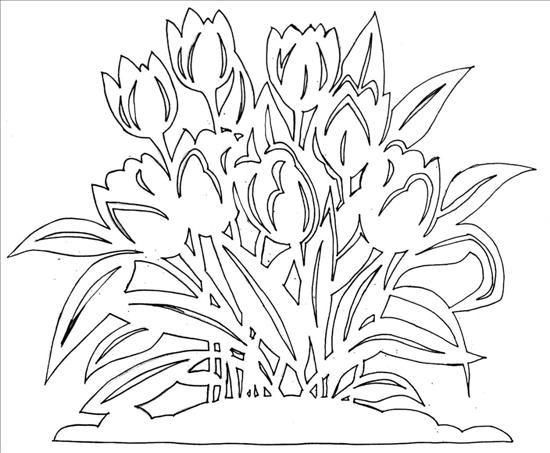 вытынанка к 8 марта шаблоны схемы трафареты цветы тюльпаны