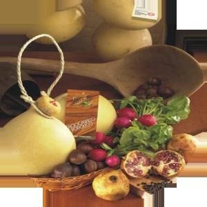 Caciocavallo Podolico.  E' un formaggio nobile dalla storia antichissima, prodotto esclusivamente con il latte di vacche podoliche allevate allo stato brado sulle alte colline di Castelnuovo di Conza. L'ampia varietà di vegetazione disponibile rende il loro latte particolarmente ricco di grassi e proteine.