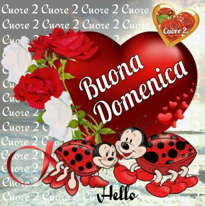 Good Morning Amore Mio : Best immagini buona domenica images on pinterest