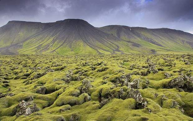 De passage en Islande, visite la péninsule de Reykjanes, à 50 km de Reykjavik. Marquée par l'activité volcanique, cette région présente de superbes paysages de champs de lave. Une balade à cheval est tout indiquée afin de découvrir ce territoire quasi lunaire, où la végétation n'est réduite qu'à une mince couche mousseuse. La géothermie est également très présente en ces lieux. L'Islande utilise majoritairement ce type de source de chaleur naturelle pour produire son énergie.