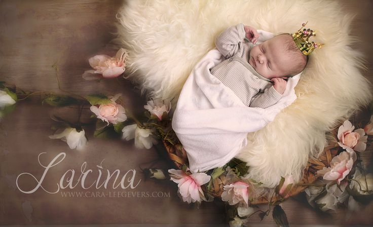 Fairytale photgraphy creative inspiration Baby newborn photography - Photographer Cara-Lee Gevers