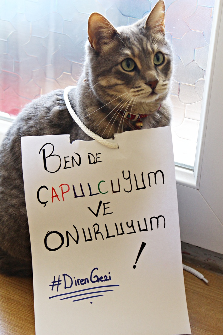 Duman Göyce