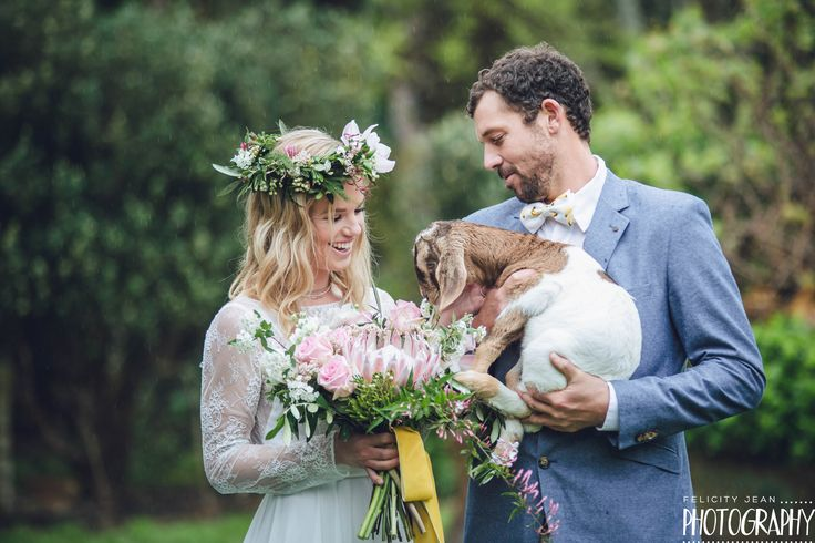 a baby goat, the perfect fit to add to  a spring bridal shoot