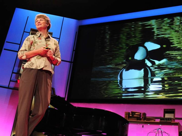 Janine Benyus: Biomimicry in action via TED. Click through for Fashion's HiveMind: Alexander McQueen, Social Media + Biomimicry