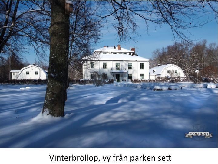 Vinterbröllop, vackert, slott, park