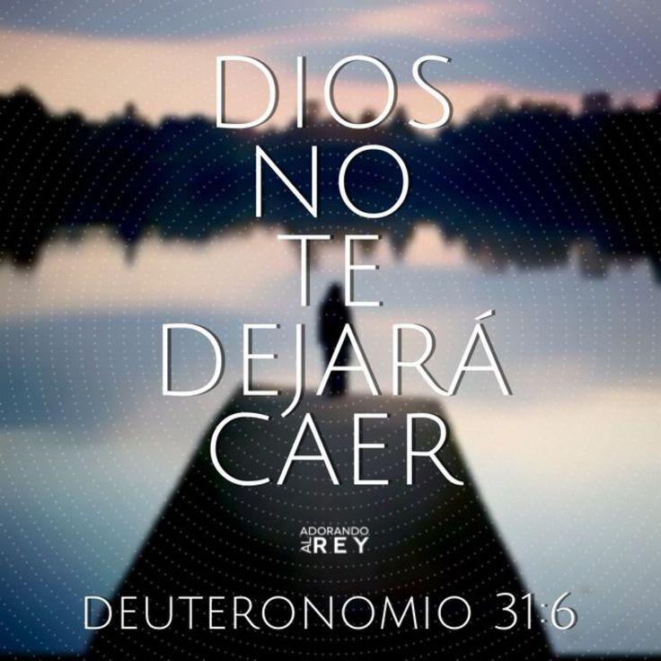 Deuteronomio 31:6 Esforzaos y cobrad ánimo; no temáis, ni tengáis miedo de ellos, porque Jehová tu Dios es el que va contigo; no te dejará, ni te desamparará.♔