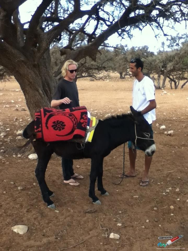 Discussing donkey mounting techniques::::  Madness in Morocco Part 2: Road trips, Moroccan Marriage, Corrupt Officials, Crazy Camels and Sure-Footed Donkeys  --> http://www.confiscatedtoothpaste.com/madness-in-morocco-part-2-road-trips-marriages-corrupt-officials-camels-donkeys/