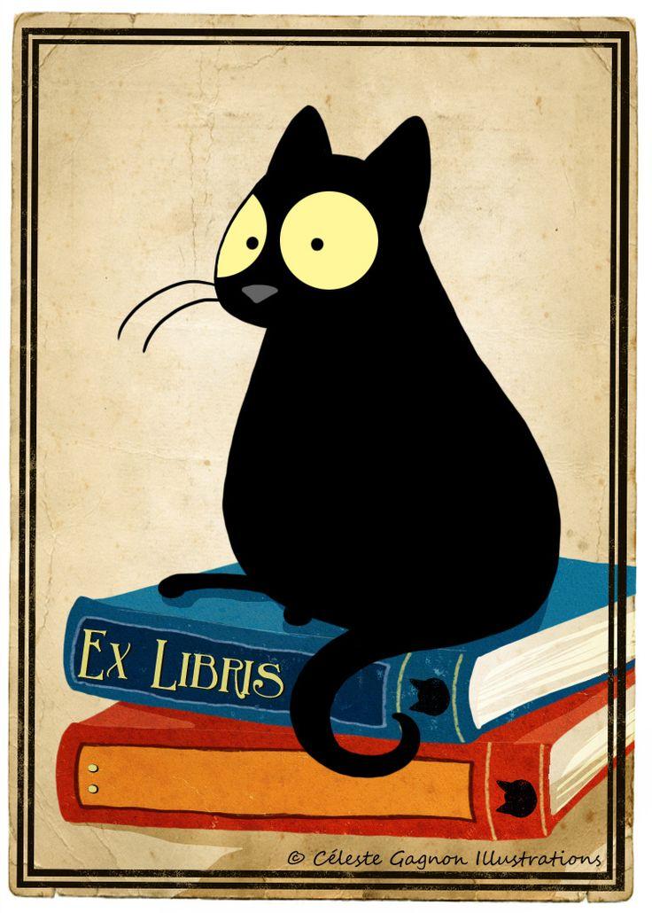 Black book cat