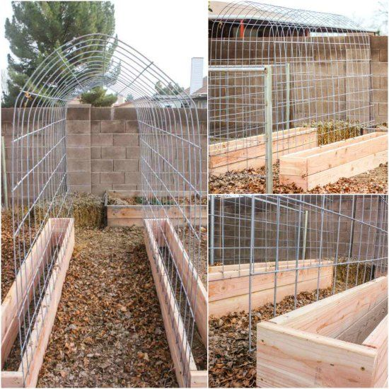 Many alternatives exist when you want to create a backyard garden. One option you can do as a fun DIY project is to build a trellis and raised garden box.