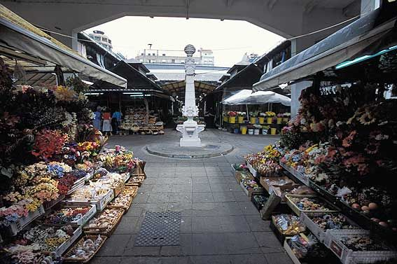 Get to the heart of the people of Porto by checking out the Bolhão market!