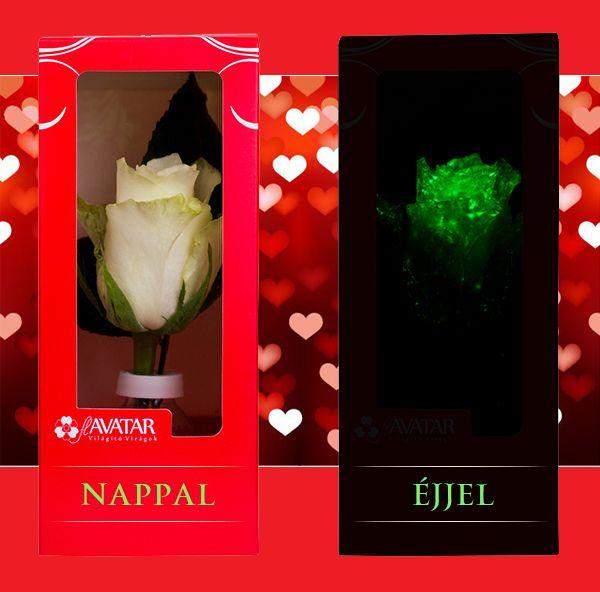 Világító Virág - rózsa, Valentin nap, Tesco termék - nappal és sötétben www.facebook.com/flavatar.hu #flAVATAR #glowsinthedark