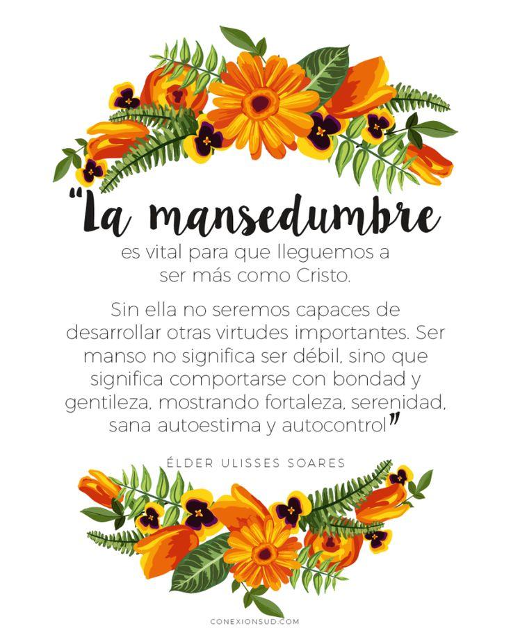 Mensaje de las Maestras Visitantes | Agosto 2015. Los atributos divinos de Jesucristo: Manso y humilde.