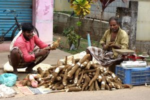 What tapioca is and authentic recipes of it. Photo: tapioca vendors on the market in India (source: my personnal food and travel blog / vlog with recipes, authentic video recipes, street food, food and travel documentary, travel info and more. Welcome! :) )