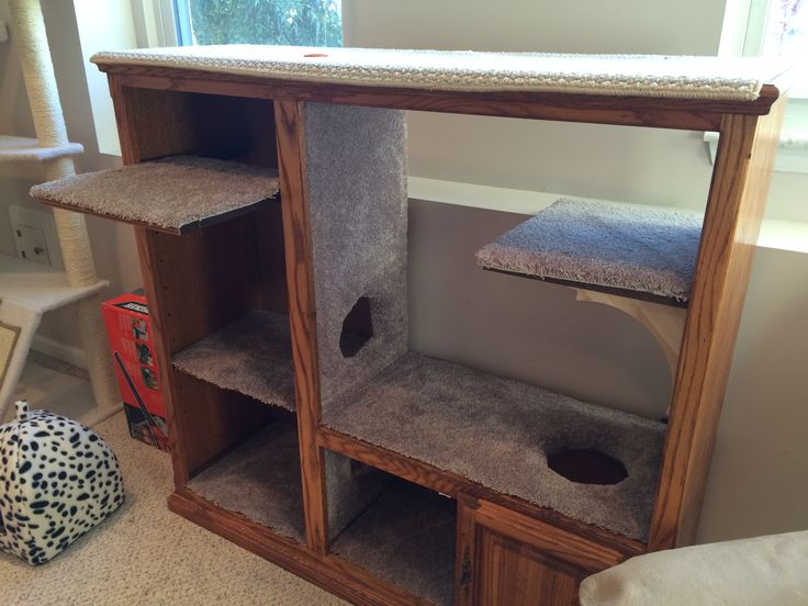 If you have a cat and an old entertainment center.  I found the entertainment center at a second hand store for $15 and magic.  Cats love it!!