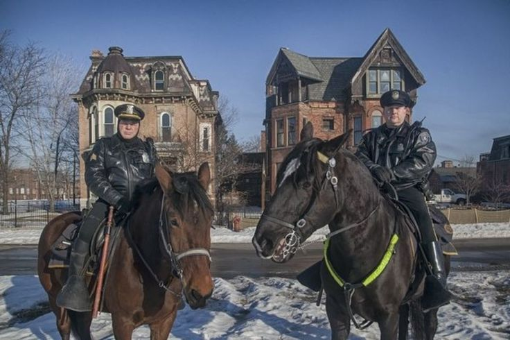 Horses prove more than ceremonial for Detroit Police Department | MLive.com
